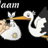 Geboortesticker ooievaar
